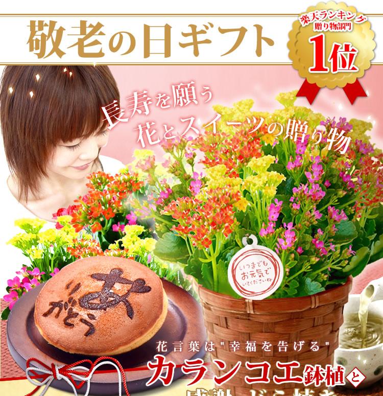 出典:http://item.rakuten.co.jp/oimoya/50167/